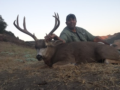 2018 Ca Blacktail Deer  Matt Ward
