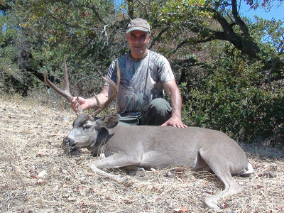 2012 Blacktail Deer - Tom Kridi