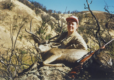 Blacktail Deer - Rosemary Anderson