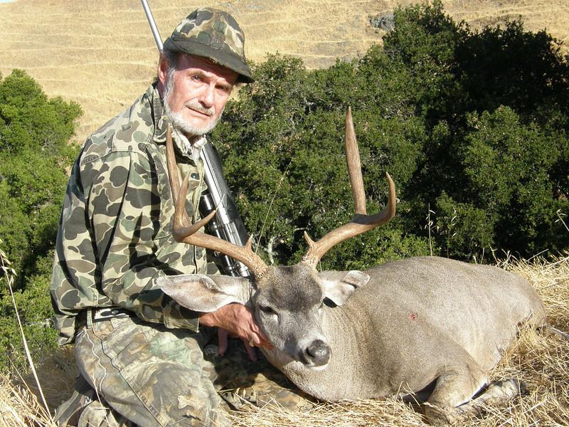 Blacktail Deer - Bob Howard