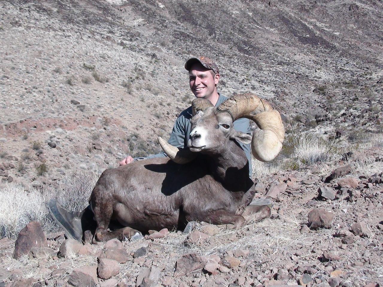 Micheal Carpinito - 2015 Marble Clipper Desert Bighorn Sheep