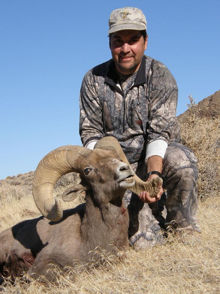 Tony Aivazian 2009 Desert Bighorn Ram