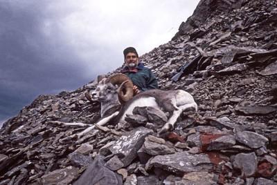 Saeed Khan - Stone Sheep - Canada
