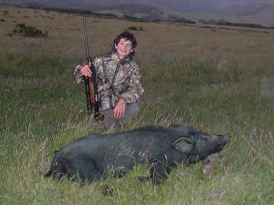First Pig