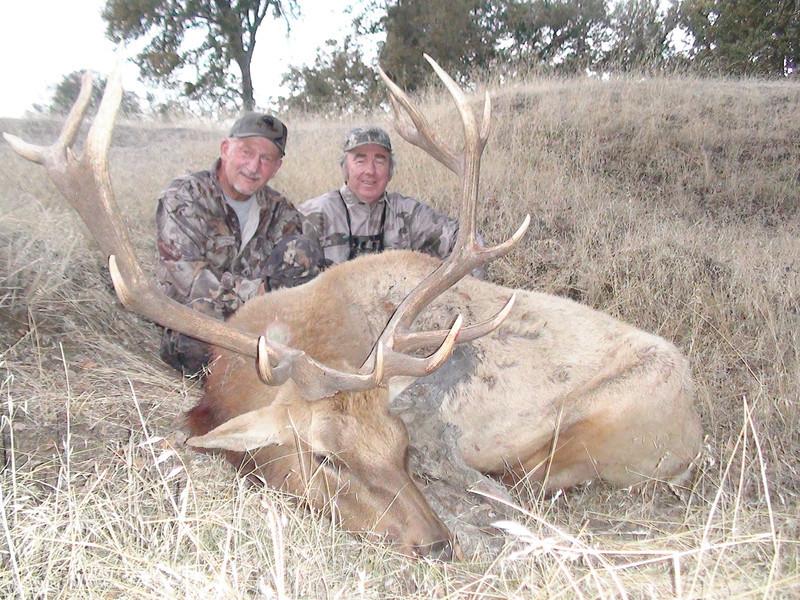Larry Meyer 2011 Tule Elk