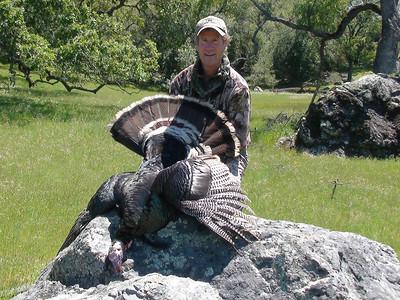 Spring 2011- Rio Grande Turkey