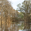 180 acres for Sale on the Edisto River