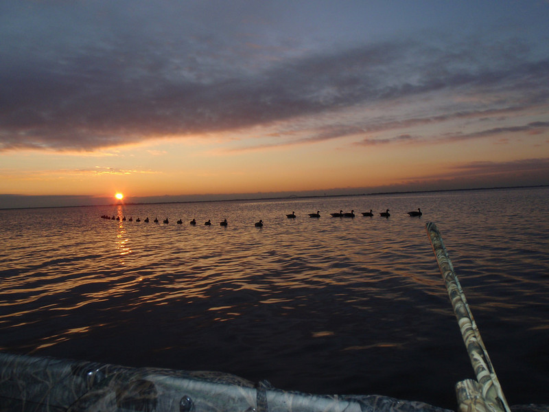 I have been side tracked and not updated the hunting reports in a while. This was a glorious sunrise looking out over the decoys on 1/11/09 hunting with Buddy Cipoletti. I just loved the way everything looked and took the shot.