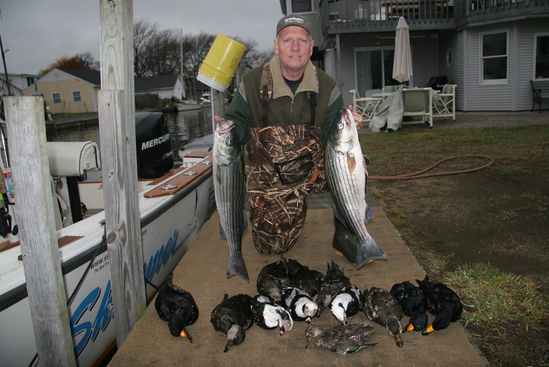 11/25/2009<br /> <br /> Jim Conte and I did  cast and blast trip today. We started by jigging some nice bass way east of the inlet around Cherry Grove. <br /> <br /> We then set up for sea duck hunting close to the beach and had a ball. The ducks were really flying.<br /> <br /> We bagged our limit of sea ducks including scoter and oldsquaw and believe it or not a green wing teal which was flying with the scoter in the ocean.<br /> <br /> Another great day on the water.<br /> <br /> Captain Al Lorenzetti