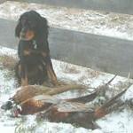 2006 Hunting