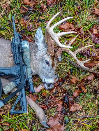 2015-Buck-4