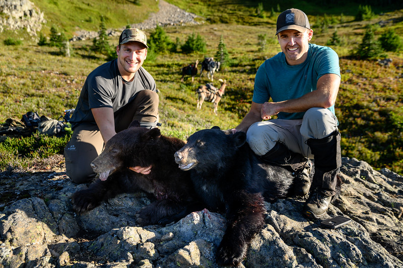 Double bear kill with pack goats (Shane - left, Ryan - right)