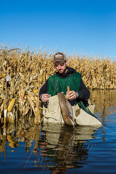 Waterfowl hunting, hunting, duck hunting