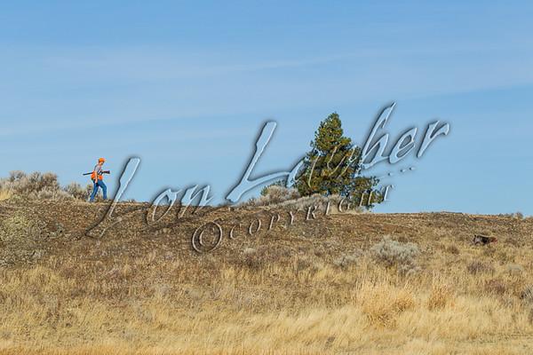 Upland bird hunting, early seaon