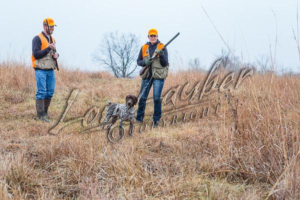 Upland bird hunting, bobwhite quail hunting