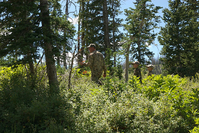 Archery hunting in the woods.  Photo taken 8-19-08, courtesy of Utah Division of Wildlife Resources.
