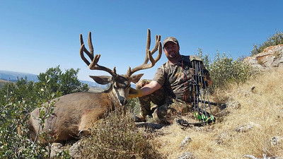Diamond Mountain unit buck