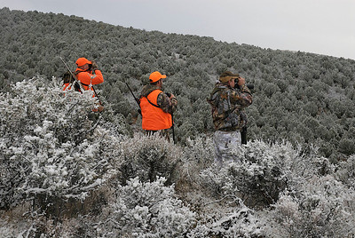 Hunters looking for game in hunter orange and camo.