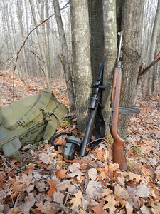 Remington 700 and an M1 Carbine