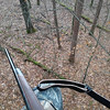 Opening morning from my stand, about 15 feet up in a tree. Last year I shot a 5 point buck (large deer for 5 points) in the first 20 minutes and the year before dad shot an 8 point buck from the same stand.