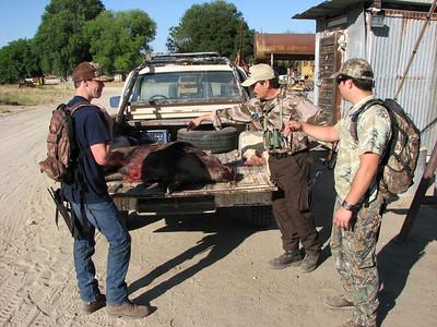 Evan's Pig Hunt
