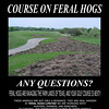 Page two of the ad.  This is an actual image of a golf course in Texas that was destroyed by those four-footed ecoterrorists.
