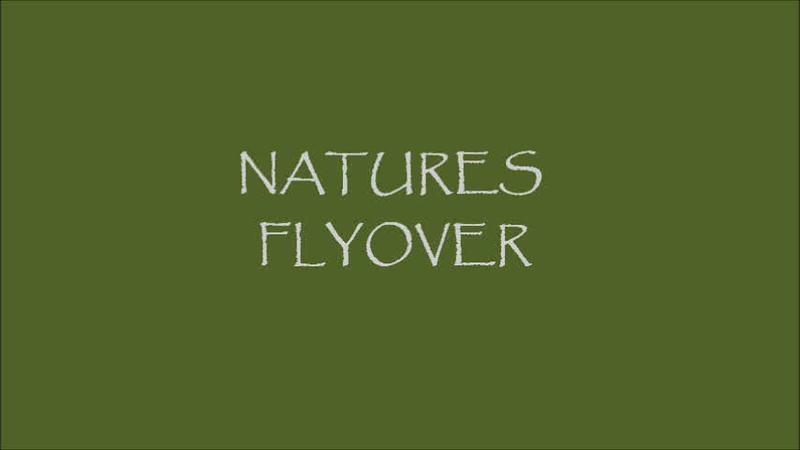 Natures Flyover