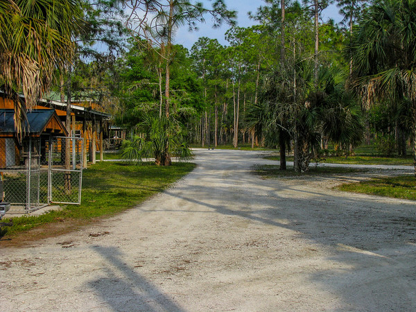 The grounds at Eric's operation in SW Florida features a quiet, clean setting and a variety of critters running around.