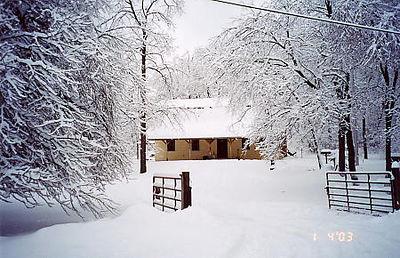 DAWG HAUS winter view