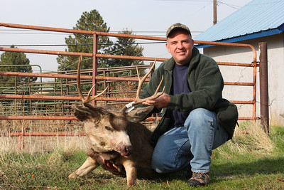This is the muley I took in 2007.  He's not the biggest I've ever taken but he certainly represents one of the best shots I've ever made.  I dropped him in his tracks with one shot at 300 yards.