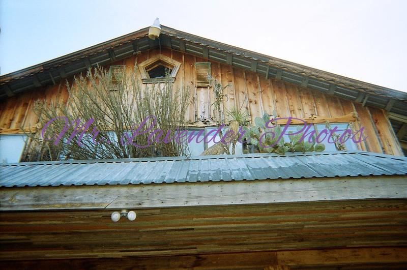 2009 Youth Hunt YO Ranch (1)