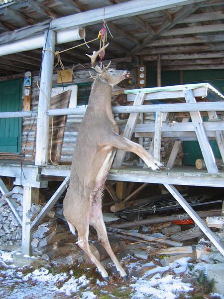 Maine Hunt '08