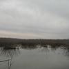 Verdigris River mud flats.