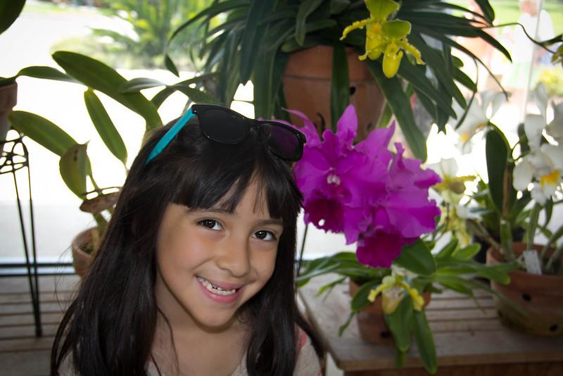 A beautiful flower...