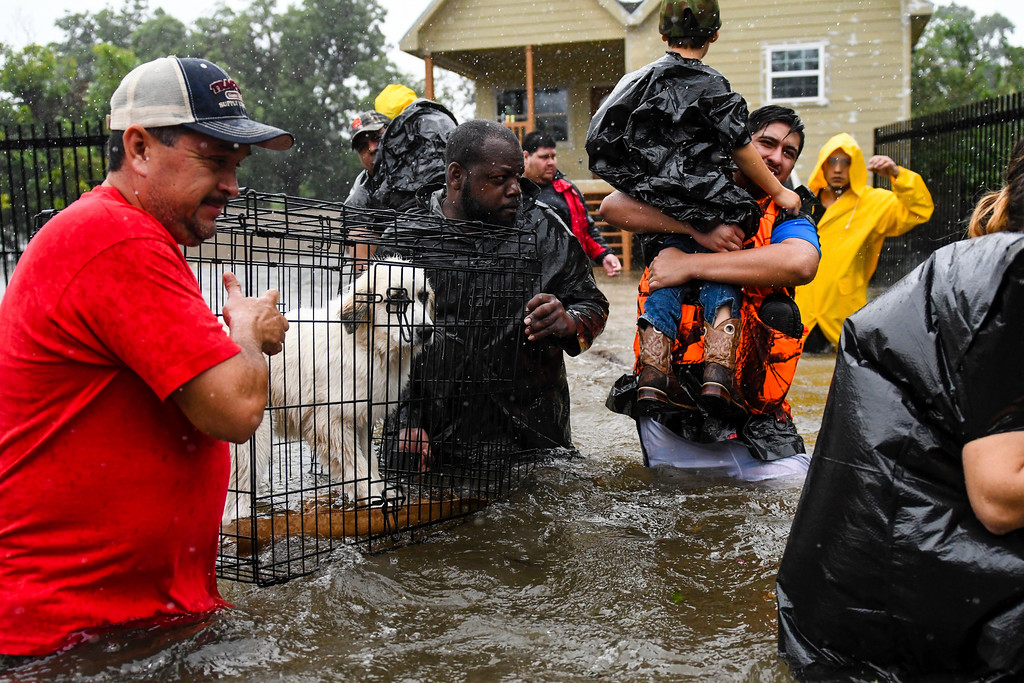 . Volunteers and first responders help flood victims evacuate to shelters as waters rise from Tropical Storm Harvey in Houston, Monday, Aug. 28, 2017. (Scott Clause/The Daily Advertiser via AP)