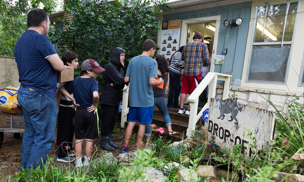 . A line forms to deliver rescued animals such as squirrels and birds to Austin Wildlife Rescue in east Austin, Texas, Sunday, Aug. 27, 2017. As Tropical Storm Harvey winds blow young and old squirrels out of the trees area residents bring the injured wildlife to the animal rescue center.  (Stephen Spillman/Austin American-Statesman via AP)
