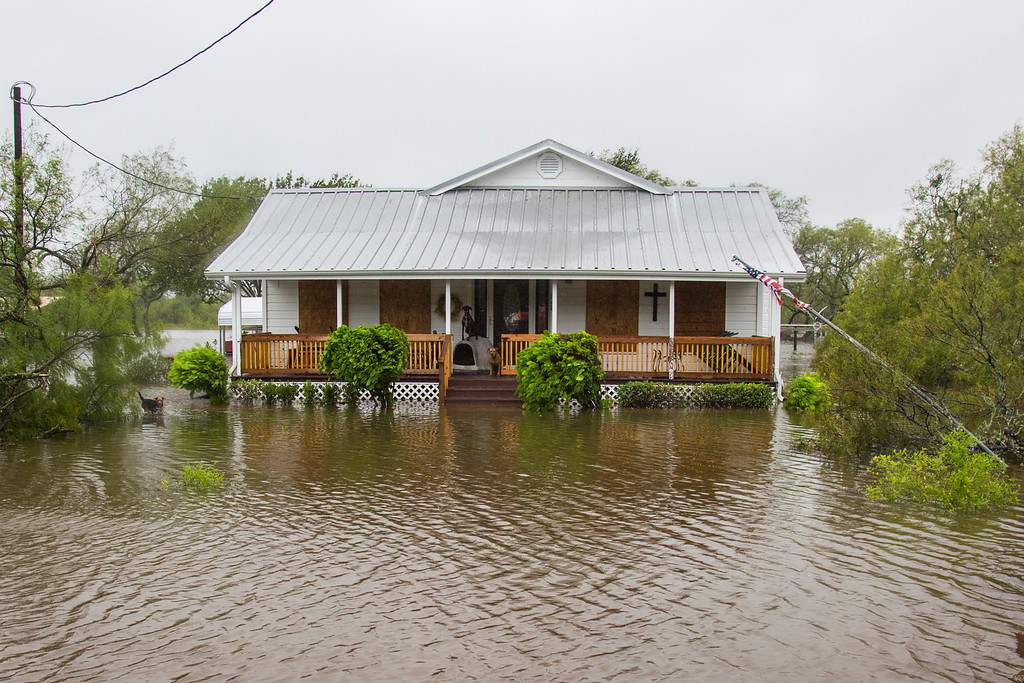 . In this August 2017 photo, dogs sit on a porch of a house in Fannin, Texas that is surrounded by high floodwaters caused by the rain of Hurricane Harvey. (Olivia Vanni/The Victoria Advocate via AP)