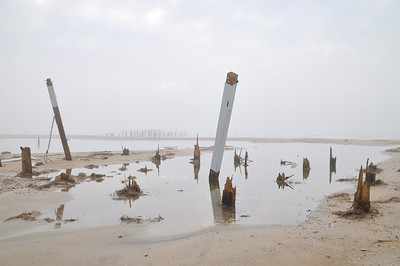 Pilings, Bolivar After Ike