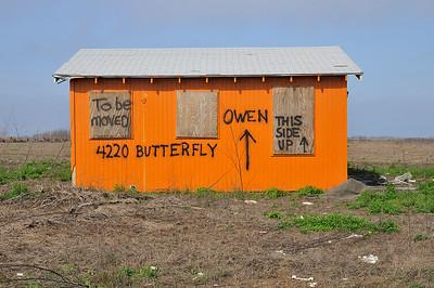 4220 Butterfly