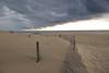 _DSC6434 2-fence-Point Beach