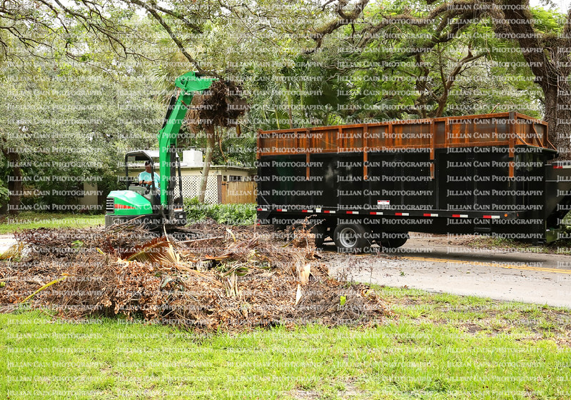 Hurricane Irma debris removal in a residential neighborhood