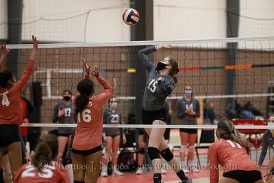 Husky Volleyball