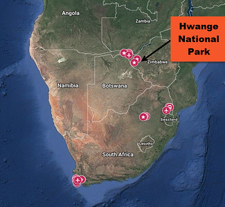 Hwange National Park Safari