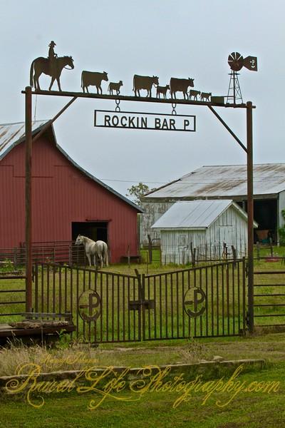 Rockin Bar P