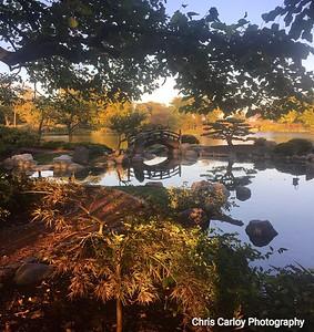 Garden of the Phoenix, Jackson Park