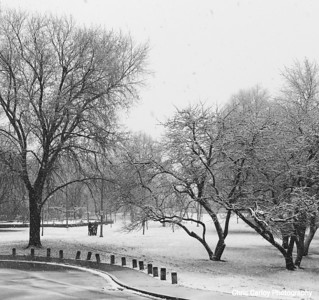 Nichols Park, First Snow