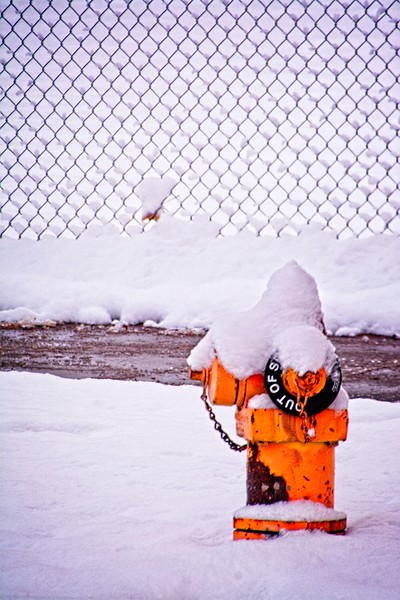 """The """"out of order"""" hydrant all covered in snow in Downtown Salt Lake City, Utah"""