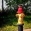 SRb1503_0804_Hydrant