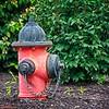 SRf2008_2953_Hydrant