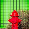 The green doors of Extra Space Storage in Murray, Utah provide a nice background for a red fire hydrant!